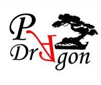 Firma Pracownia Artystyczna Dragon